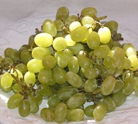 Thompson Seedless Grape Picture