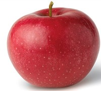 Red Rome Apple Picture