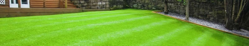 Overseeding A Bermuda Lawn With Ryegrass