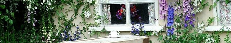 Designing The Cottage Garden