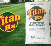 Titan Rx Turf Type Tall Fescue Picture