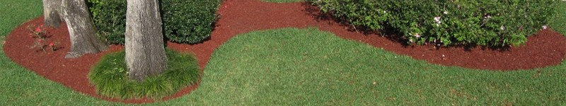 The Purposes for Mulch in the Landscape