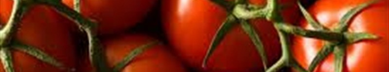 Nutrition and Health Benefits from Tomatoes