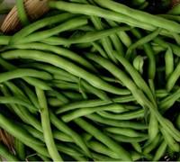 Pole Filet Beans - Emerite Picture