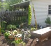My water garden