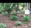 Mers' Garden 1 5/17/11