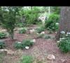 Mers' garden 5 5/17/2011
