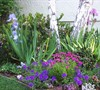 Entry Flower Bed Garden