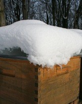 Snow capped honey bee hive