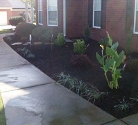 Picture of Pro-Vision Lawncare&Landscaping