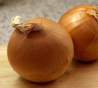 Stuttgarter Reisen Yellow Onion Picture