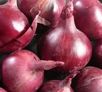 Comred Onion Picture