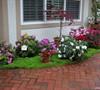 Entry Patio Garden