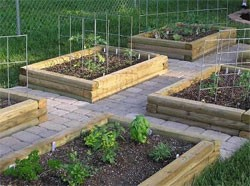 Raised Bed Vegetable Garden Small Space