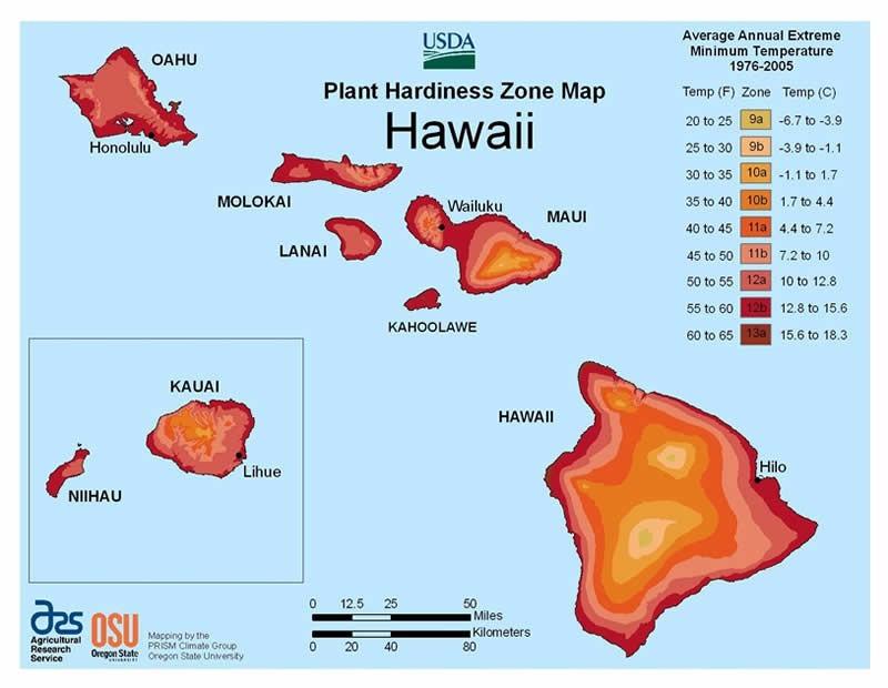hawaii usda plant hardiness zone map