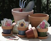 Container Gardening Clay Pots