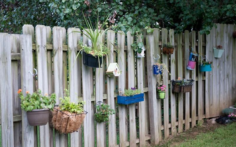 Hanging wall Garden Gardenality