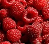 Heritage Red Raspberry
