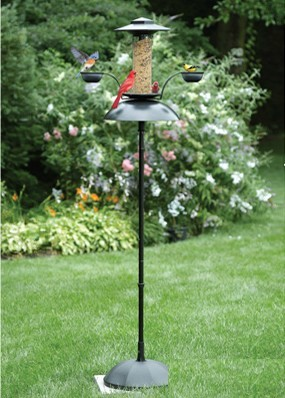 Effortless Oasis Bird Feeder