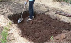 Double Digging Vegetable Garden