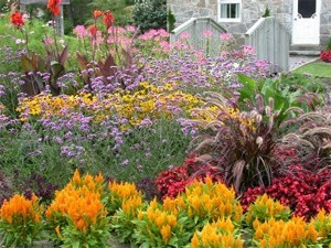 A Seasonal Flower Bed Is Garden That Can Be Changed From Season To Using Annual Bedding Plants And Or Other Types Of