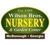 Wilson Bros Nursery sells White Caladium