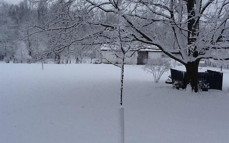 Seasonal Picture