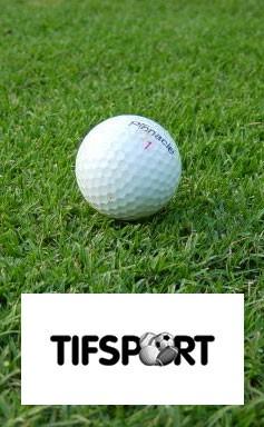 TifSport Bermudagrass